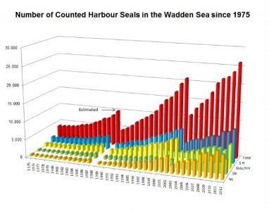 Bild 0 von Seehundzählung 2012: Mehr Seehunde im Wattenmeer als je zuvor