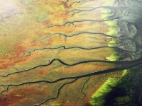 Bild 3 von Renommierter Luftbildfotograf Launer stellt auf Juist aus