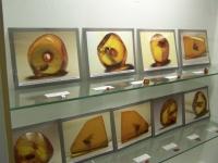 Bild 3 von Erweiterung vom Küstenmuseum bietet zahlreiche Neuigkeiten