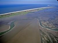 Bild 4 von Bei Ebbe offenbart das Wattenmeer seine Geheimnisse