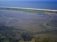 Bild 5 von Bei Ebbe offenbart das Wattenmeer seine Geheimnisse