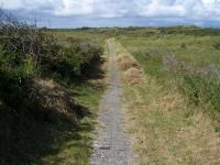 Bild 2 von Fußweg zur
