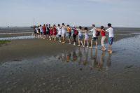 Bild 0 von Bingo-Umweltstiftung fördert Nationalpark-Bildungsprogramm