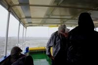 Bild 7 von Seehundbänke sind immer ein beliebtes Ausflugsziel