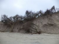 Bild 3 von Dünenabbrüche an der Westspitze