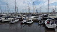Bild 0 von Musikfestival beschert dem SKJ vollen Bootshafen