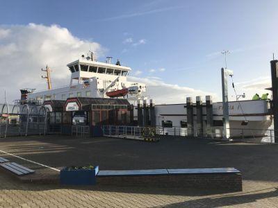 Bild 0 von Ein ganz seltener Gast im Juister Hafen