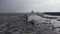 Bild 2 von Juister Hafen ist wieder zum Leben erwacht