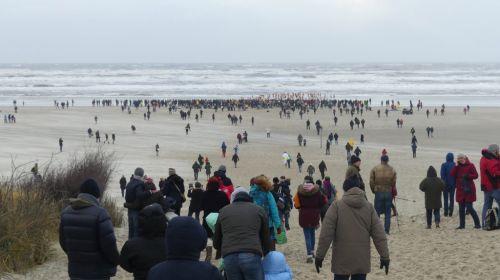 Bild 0 von Mehr als 200 Teilnehmer beim Neujahrsschwimmen auf Juist