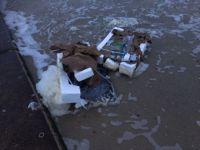 Bild 2 von Erneute Anlandungen von Strandgut auf  Borkum