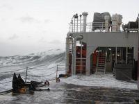 Bild 7 von Erneute Anlandungen von Strandgut auf  Borkum