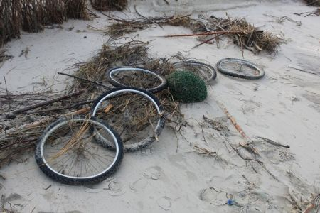Bild 0 von Bürger und Gäste werden zur Strandreinigung aufgerufen