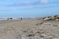 Bild 9 von Dünenabbrüche und Strandmüll bewegen die Inseln