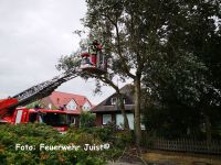 Bild 0 von Feuerwehr entfernte sicherheitshalber abgeknickte Äste