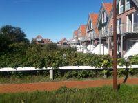 Bild 1 von Verhaltene Reaktionen für weitere Häuser am östlichen Ortsrand