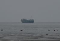 Bild 0 von Küstenmotorschiff