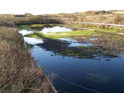 Bild 0 von Wanderwege zurzeit wegen Wasser nicht passierbar