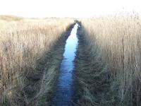 Bild 3 von Wanderwege zurzeit wegen Wasser nicht passierbar
