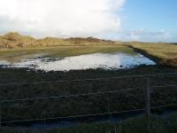 Bild 4 von Wanderwege zurzeit wegen Wasser nicht passierbar