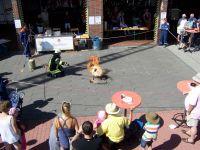 Bild 3 von Viele Gäste besuchten Tag der offenen Tür der Feuerwehr