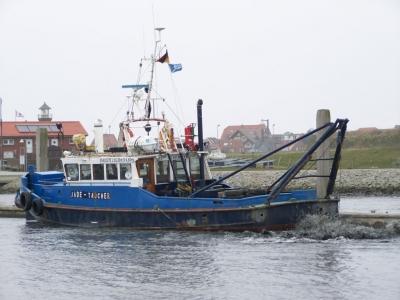 """Bild 0 von Der """"Jade-Taucher"""" bringt Bootshafen auf Tiefe"""
