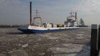 Bild 3 von Juister Hafen ist wieder zum Leben erwacht