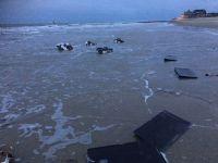Bild 1 von Erneute Anlandungen von Strandgut auf  Borkum