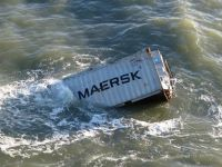 Bild 6 von Erneute Anlandungen von Strandgut auf  Borkum
