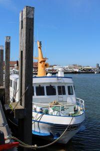 Bild 0 von Ausflugsfahrten der Reederei Cassen-Tours beginnen wieder