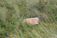 Bild 8 von Weitere Fotos von der Windhose am Juister Strand